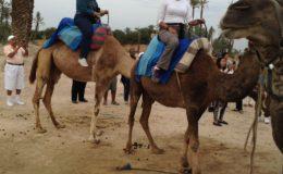 Morocco Lake Arbor Travel