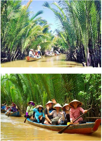 lake arbor travel vietnam lets row there too